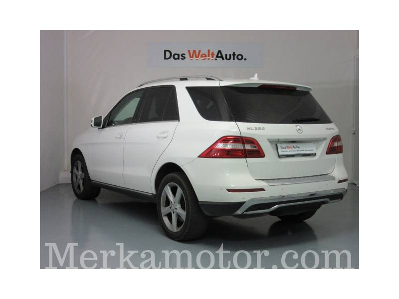 Mercedes-Benz Clase M ML 250 BlueTEC 4MATIC Edition 1