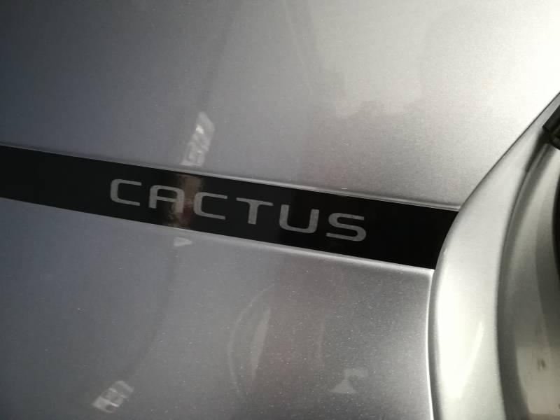 Citröen C4 Cactus PureTech 81KW (110CV) S&S Feel