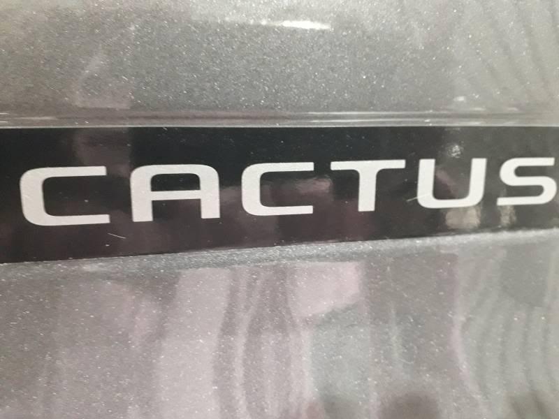 Citröen C4 Cactus PureTech 81KW (110CV) S&S Shine