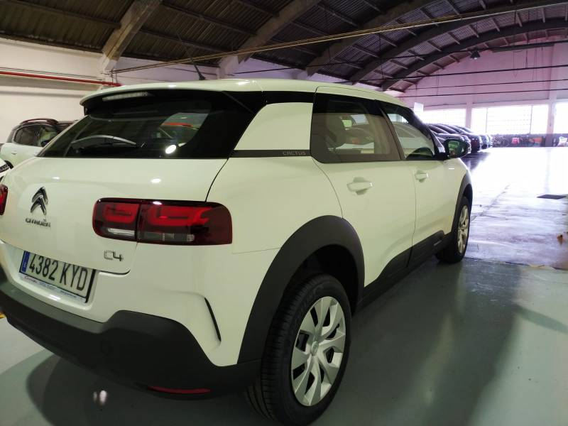 Citröen C4 Cactus BlueHDi 100CV S&S Business